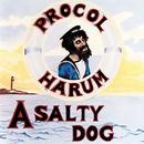A Salty Dog thumbnail