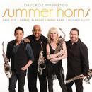 Summer Horns thumbnail