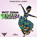 Tamara (Remixes) thumbnail