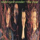 Wide-Eyed Wonder thumbnail