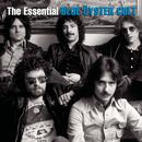 The Essential Blue Öyster Cult thumbnail