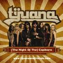(The Night of the) Capibara! thumbnail