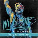 Wild Ones (Deluxe) thumbnail