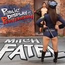 Public Display Of Perversion - EP thumbnail