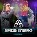 Amor Eterno (Homenaje Version Bachata) (Single) thumbnail