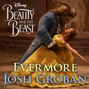 "Evermore (From ""Beauty And The Beast"") (Single) thumbnail"