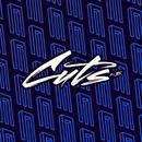 DJ Sneak Presents Magnetic Cuts V.5 thumbnail