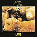 Songs For The Flock thumbnail