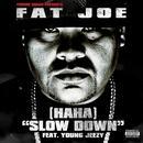(Ha Ha) Slow Down (Radio Single) (Explicit) thumbnail