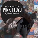 A Foot in the Door: The Best of Pink Floyd thumbnail