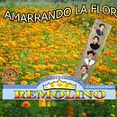 Amarrando La Flor thumbnail