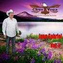 Puras De Juan Gabriel, Vol. 5 thumbnail