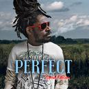 Perfect: Special Edition thumbnail