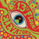 The Psychedelic Sounds Of The 13th Floor Elevators (2008 Remaster) thumbnail