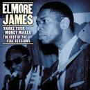 Shake Your Moneymaker: The Best Of The Fire Sessions thumbnail