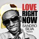 Love Right Now (Sandro Silva Remix) (Single) thumbnail