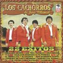 22 Exitos De Los Cachorros De Juan Villarreal thumbnail