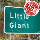 Little Giant Maxi Single thumbnail