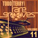 Todd Terry's Rare Grooves Volume 11 thumbnail