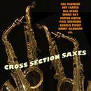 Cross Section Saxes thumbnail