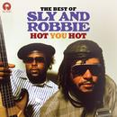 Hot You Hot: The Best Of Sly & Robbie thumbnail