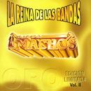 La Reina De Las Bandas Vol. II thumbnail