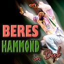 Beres Hammond: In Dub (Deluxe Version) thumbnail