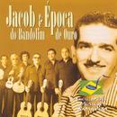 Enciclopédia Musical Brasileira thumbnail