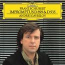 Schubert: Impromptus Op.90, D.899 & Op.142, D.935 thumbnail