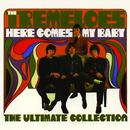 Here Comes My Baby: The Ultimate Collection thumbnail