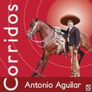 Corridos thumbnail