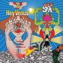Hey Venus! thumbnail