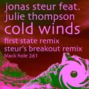 Cold Winds (Remixes) thumbnail