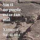 Sin Ti No Puede Estar Tan Mal (Single) thumbnail