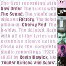 Tender Bruises And Scars thumbnail