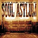 Black Gold: The Best Of Soul Asylum thumbnail