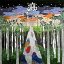 Mississippi Acid Pine Highway Tour thumbnail