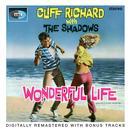 Wonderful Life thumbnail