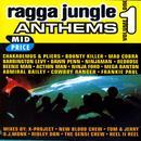Ragga Jungle Anthems Vol. One thumbnail