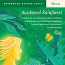 Awakened Rainforest thumbnail