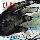 Sleep When I'm Dead (Mix 13) (Radio Single) thumbnail