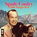 Fiddle Boogie Best thumbnail