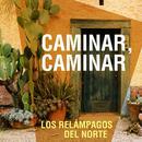 15 Exitos De Los Relampagos Del Norte thumbnail