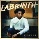 Jealous (Remixes) thumbnail