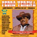 Pedro Yerena 15 Exitos thumbnail