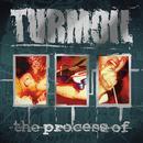 The Process Of thumbnail