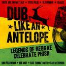 Dub Like An Antelope thumbnail