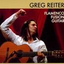 Flamenco Fusion Guitar thumbnail