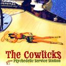 Psychedelic Service Station thumbnail