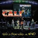 Valle De Bravo Vibra... En Vivo thumbnail